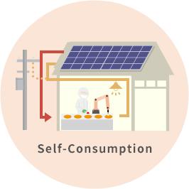 Self-Consumption